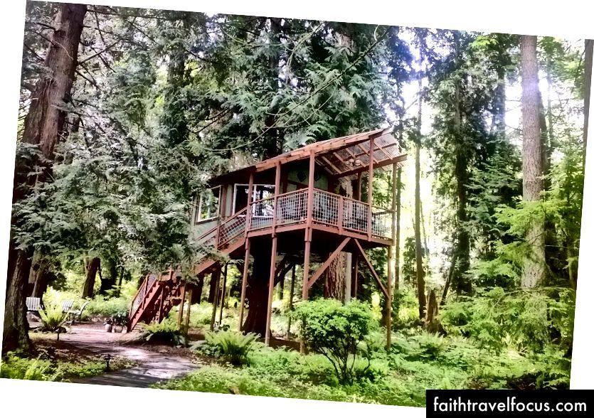 Джерело: Популярний Treehouse Airbnb у Вашингтоні