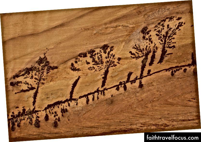 Cây hóa thạch trên các bức tường sa thạch của Wadi Ghweyr.