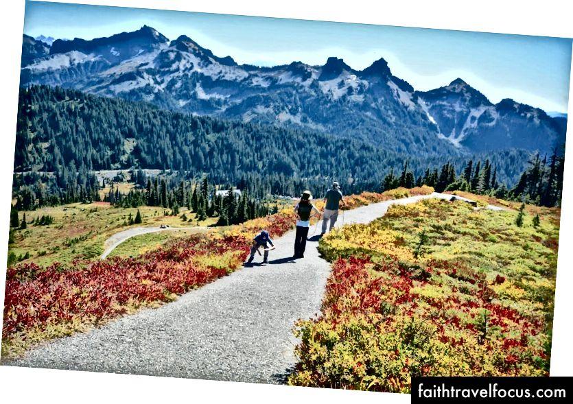 Рай у горі. Національний парк Реньє, Вашингтон