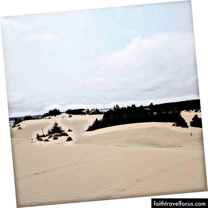 Oregon kum tepeleri, kocamın kendini dört tekerlekli olarak öldürdüğü için çok endişelendim.