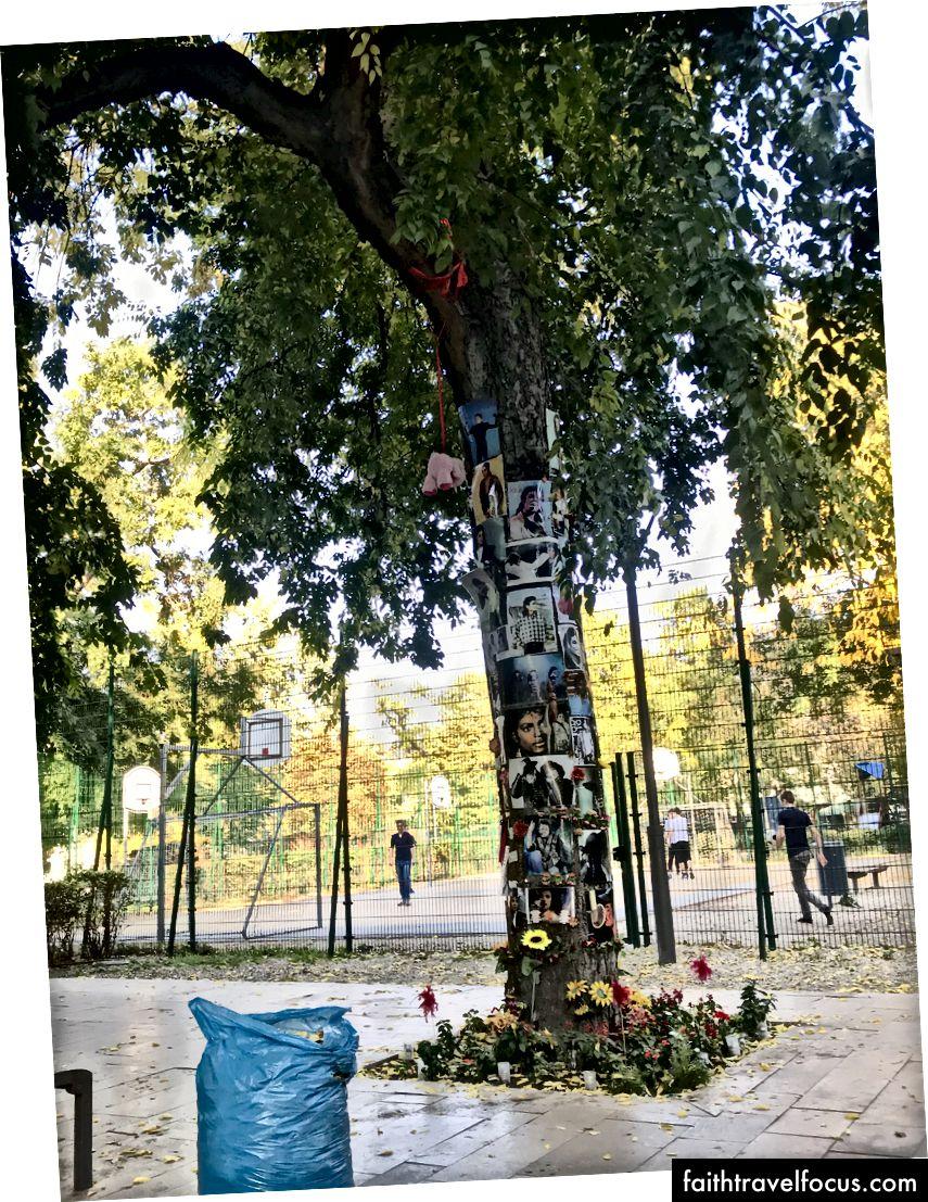 Меморіальне дерево Майкла Джексона