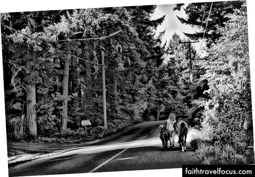 Жінка гуляє коня за межами Дункана, Британська Колумбія, Канада.
