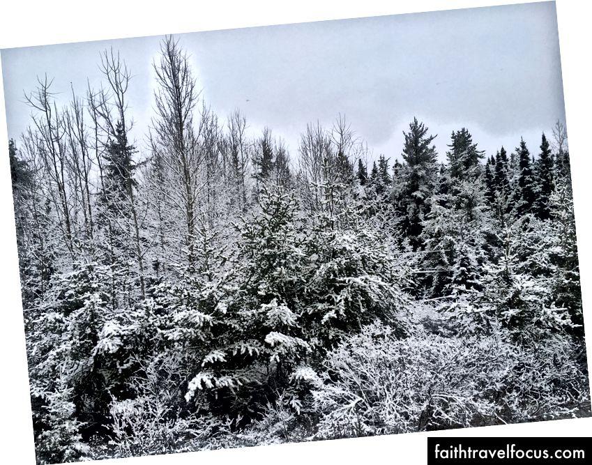 Mặt trời, tuyết và một lớp lót bạc