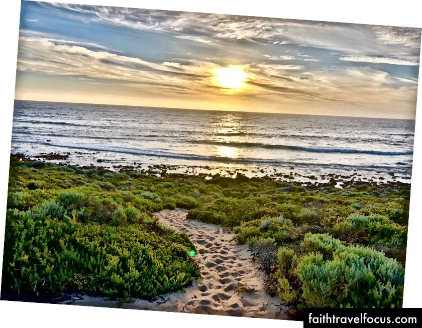 Пішли на захід сонця бігати в горищах уздовж пляжу в Грейстаун під час заходу сонця.