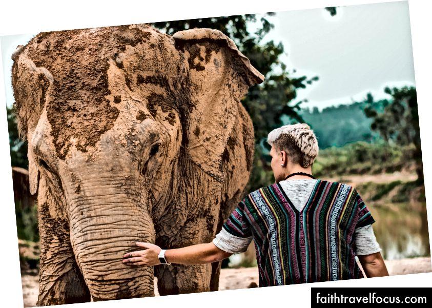 Voi Jungle Sanctuary Pattaya, thành phố Pattaya, Thái Lan; Ảnh của Trinity Treft