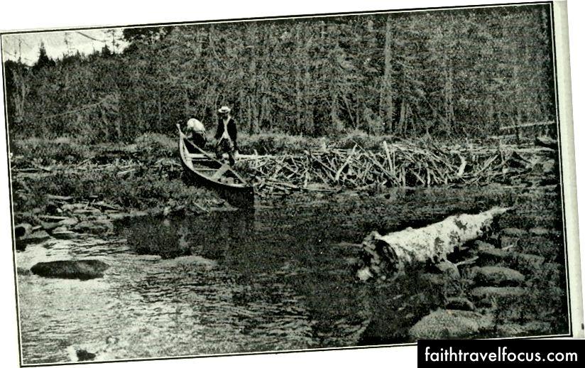 Tạp chí Rod & Gun 1898, Flickr