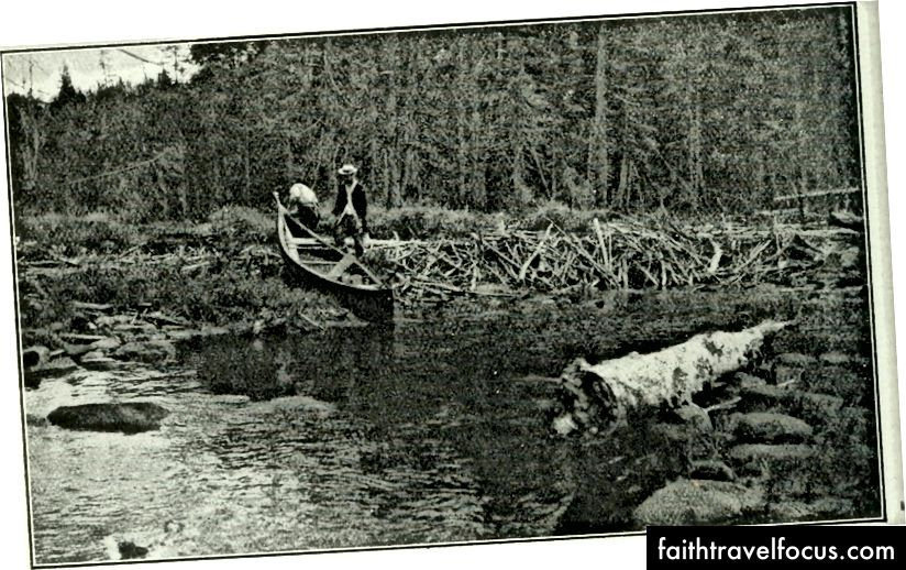 Журнал Rod & Gun 1898, Flickr