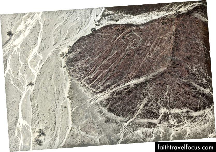 Лінія Nazca
