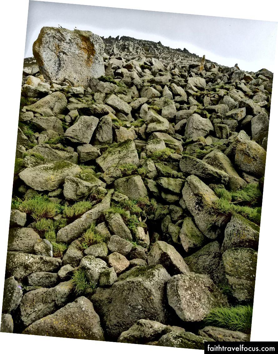 Nếu nói rằng hòn đảo này là đá sẽ là một cách đánh giá thấp. Nhưng bạn có thể nhận ra hai nhát?