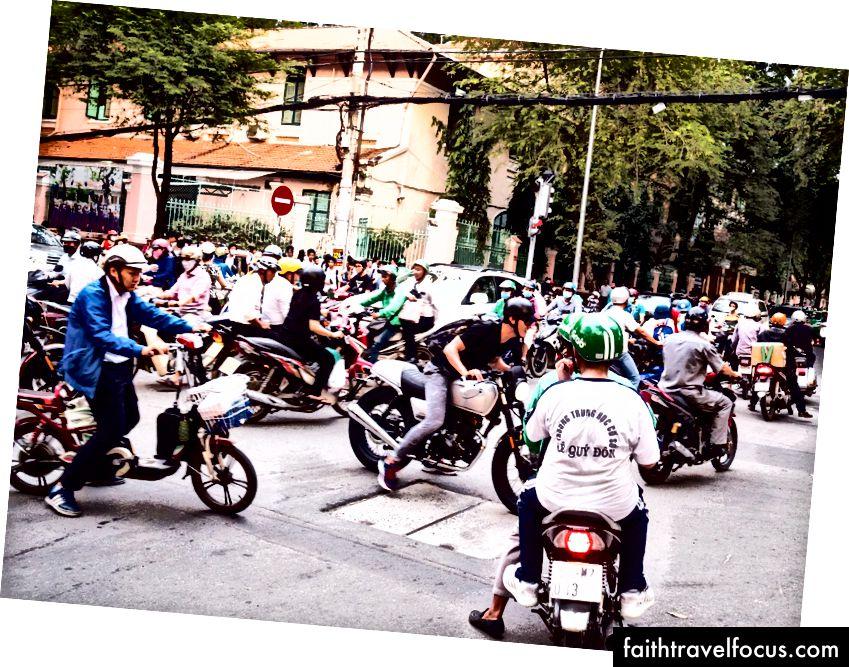 Cây lau nhà ở thành phố Hồ Chí Minh có sức lan tỏa