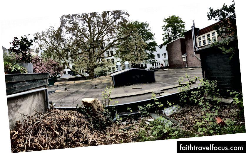 Khung cảnh nhìn từ khu vườn phía sau Học viện Koffie ở Amsterdam. Ảnh: Zander Nethercutt