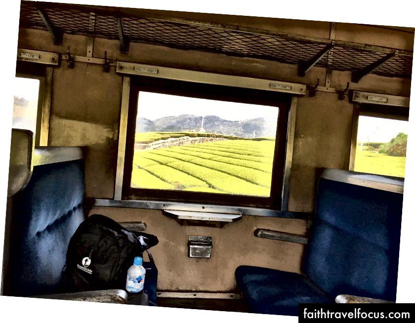 чайні поля на локомотиві ойгава (Шизуока славиться)