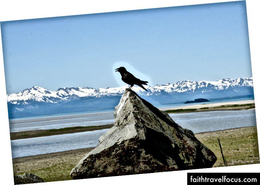 Dzantik'i Héeni'deki (Juneau) Eagle Beach'te (ch'ak'ın adında) konuştunuz.