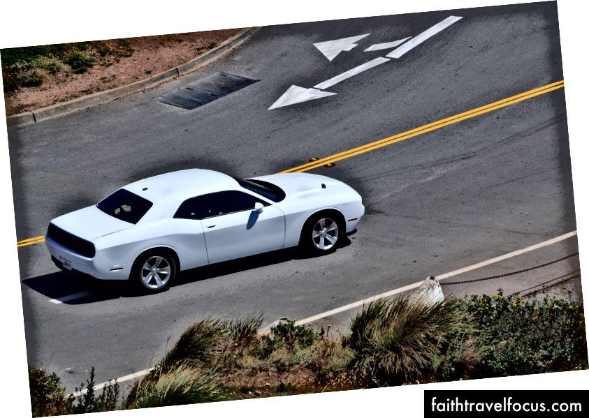 Дикий Dodge Challenger помітив