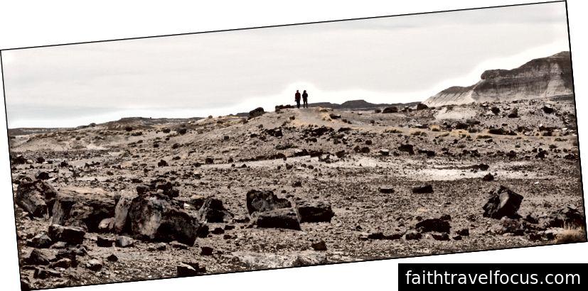 Phong cảnh với những con số, Rừng hóa đá, AZ 4 Hay11 Từ2018