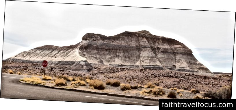 Phong cảnh có dấu hiệu dừng lại, Khu rừng hóa đá, AZ 4 Hay11 Từ2018