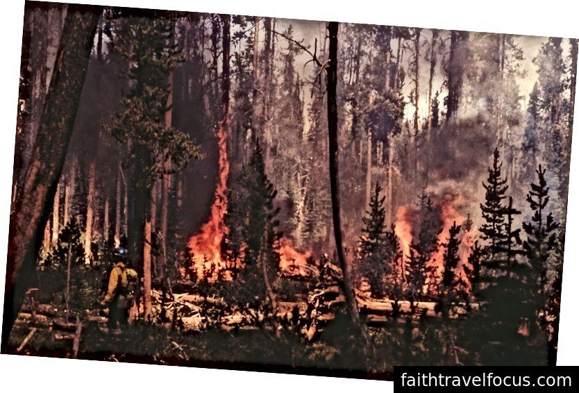 Düşme ateşinde geri tepme; Kathy Peterson; Temmuz 1988; Yer ateşi; NPS.gov