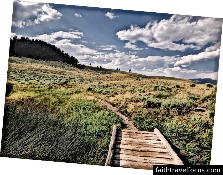 Không có chỗ cho sự nhu mì; Đường mòn Blacktail Deer Creek, Yellowstone