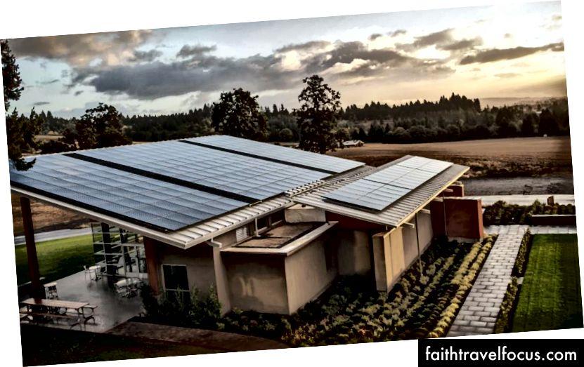 Компанія Stoller Estate стала першим виноробним заводом на північному заході, який виробляв сонячну енергію. Зображення: нерухомість Stoller.