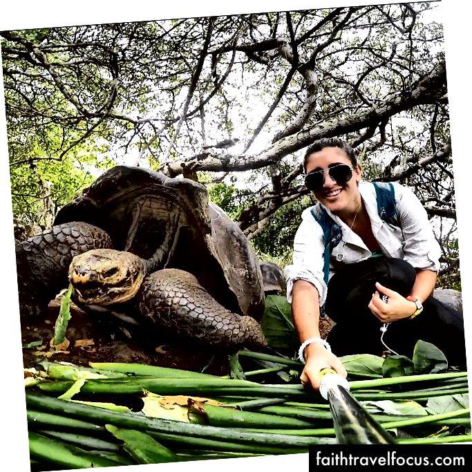 Trong khi câu chuyện không bắt đầu ở đây, nó dẫn đến một hành trình khi tôi đang làm việc ở Galapagos với những con rùa khổng lồ