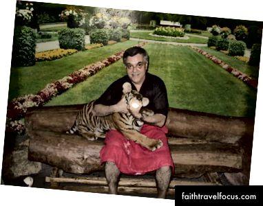 Tiger Cubs ở Thái Lan