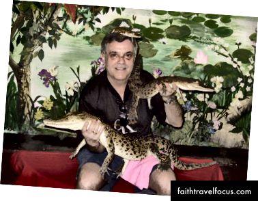 Cá sấu con ở Thái Lan