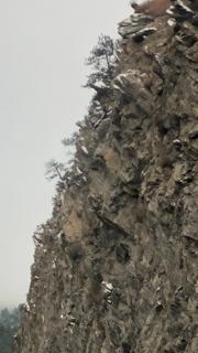 Một khuôn mặt lởm chởm của một ngọn núi