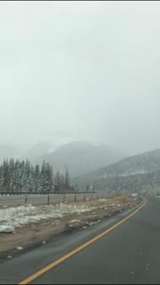 Lái xe vào cơn bão tuyết