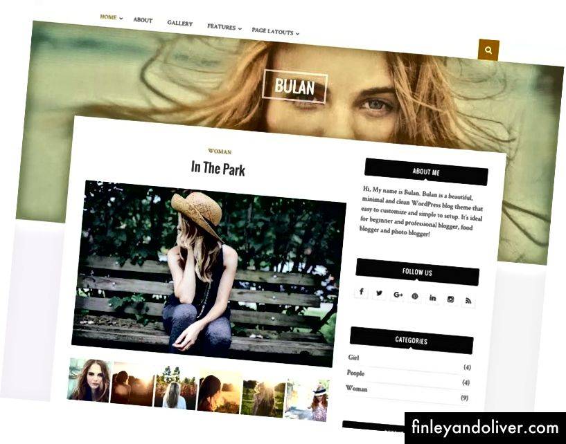 WordPress Professional Blog Theme