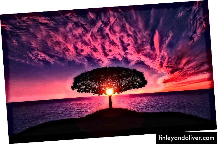 Tasvir krediti: PixaBay