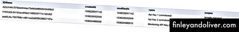 API Key-database-entiteit