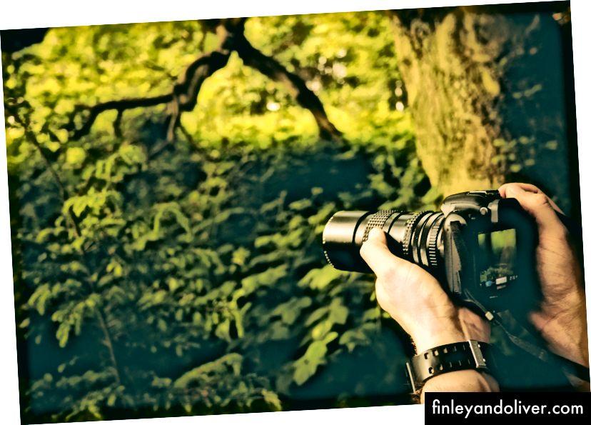 """""""Човек, носещ часовник, който прави снимка на природата в гората"""" от Джейми Стрийт на Unsplash"""