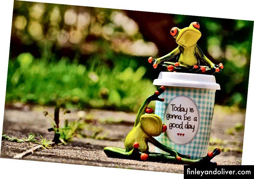 """Bildebeskrivelse: Bilde av en kopp kaffe som sier """"I dag blir en god dag"""", og to froskefigurer som sitter på og ved siden av koppen og gjør yoga. Kilde: Alexa sine bilder på Pixabay"""