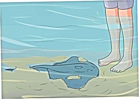 Środki ostrożności w wodzie