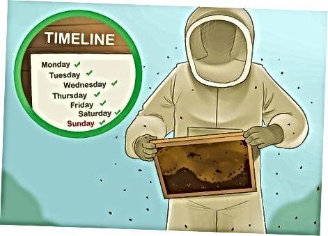 Bee hamjamiyatiga g'amxo'rlik qilish