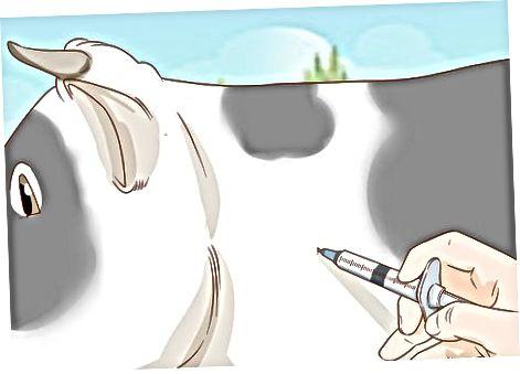 Davanje intramuskularne (IM) injekcije