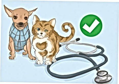 Veterinar bo'lish