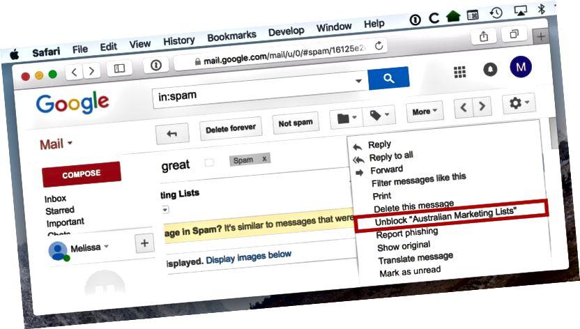 Gmaili saatja blokeeringu tühistamine