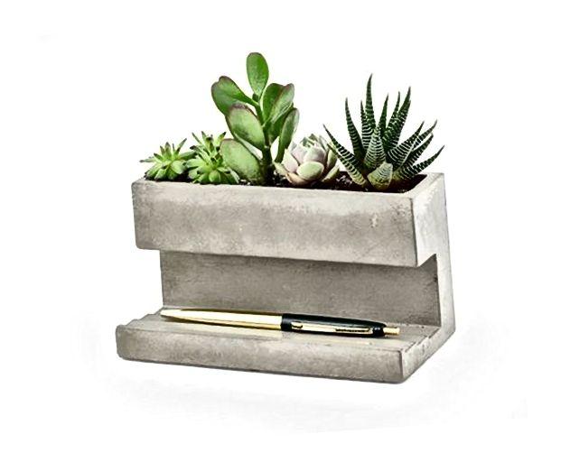 Kikkerland Stolna sadnica za beton