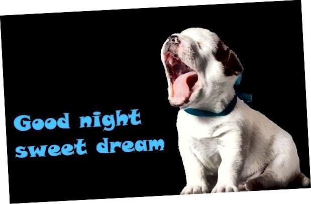 Smiješne pic ideje za laku noć 1