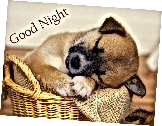 Slatke fotografije za laku noć 1