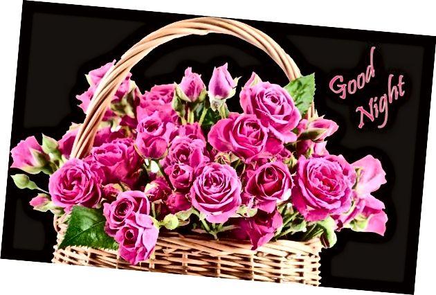 Korisne laku noć s lijepim cvjetovima 1