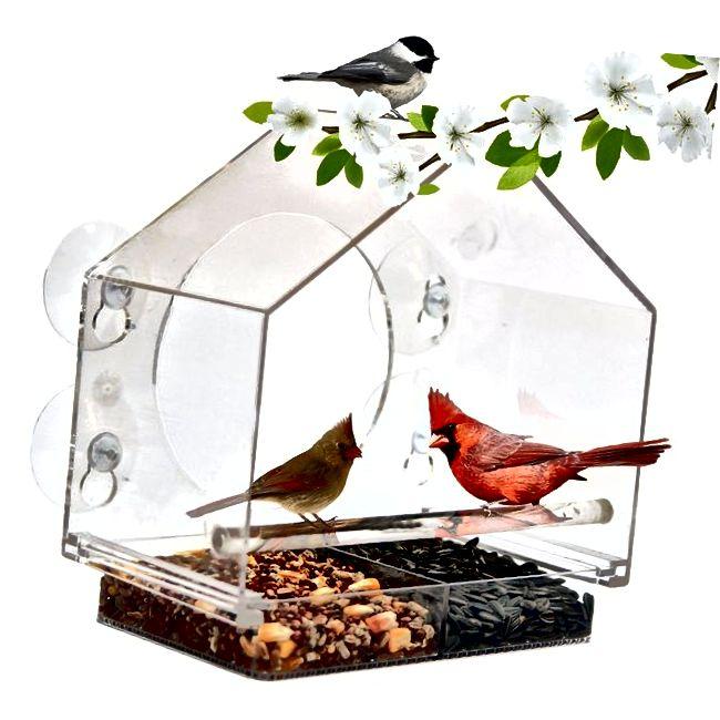 Uložak za ptice prozora