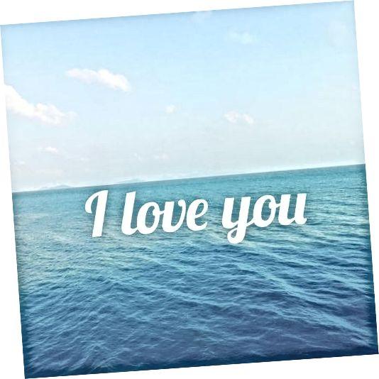 Σ 'αγαπώ το μίμ