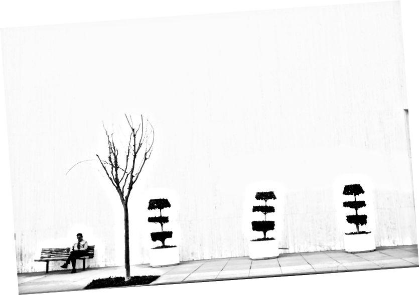 """""""Order # 4."""" Beverly Hills, 2016. Av Josh S. Rose."""