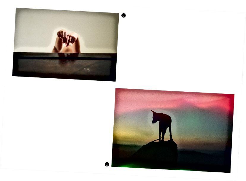 Lijevo: thefilmbruja - Desno: teetonka