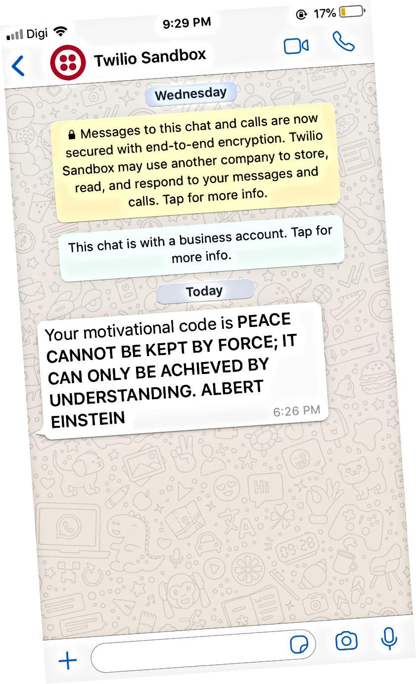 WhatsApp-skärmbild för mottagande av offert