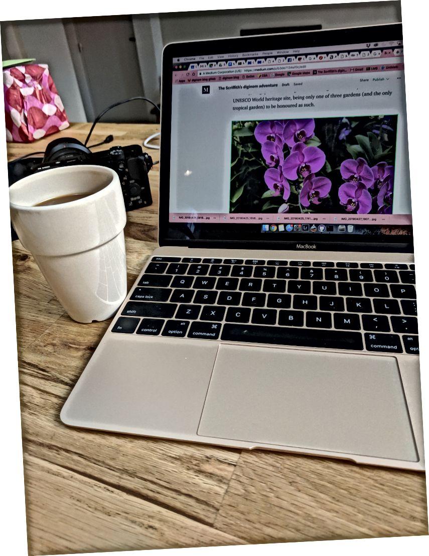 في بداية التدوين - بريد سنغافورة