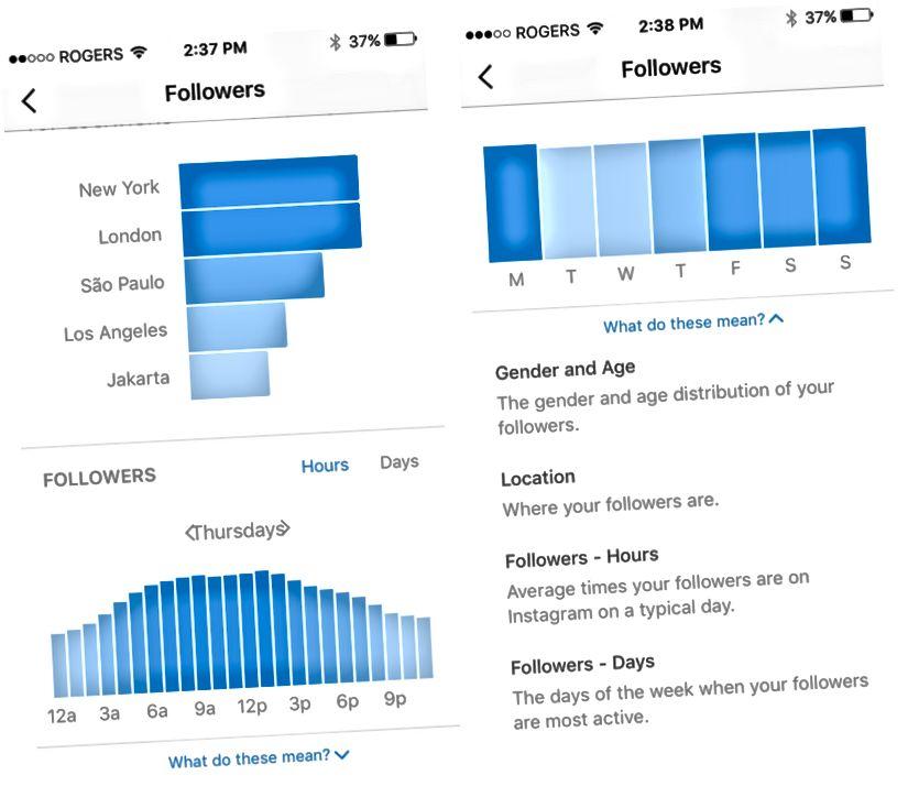Instagrami loomulik analüüsitööriist, mis näitab, mis kellaaegadel ja päevadel on teie jälgijad kõige aktiivsemad. Allikas: hiljem.