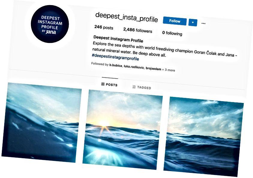 Bild 6. Bevittna den djupaste Instagram-profilen, skapad av Saatchi & Saatchi.